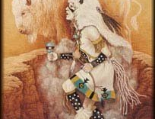 Buffalo Medicine Woman ~ Mitakuye Oyasin (All My Relations) My Shamanic Journey Experience